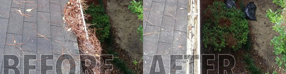 awc-gutter-cleaning-charleston